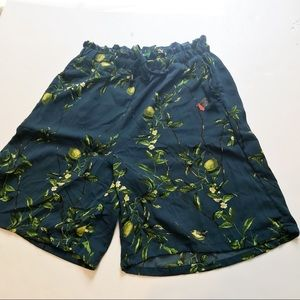 Anthropologie Blue Limes and Leaves Shorts Sz XS